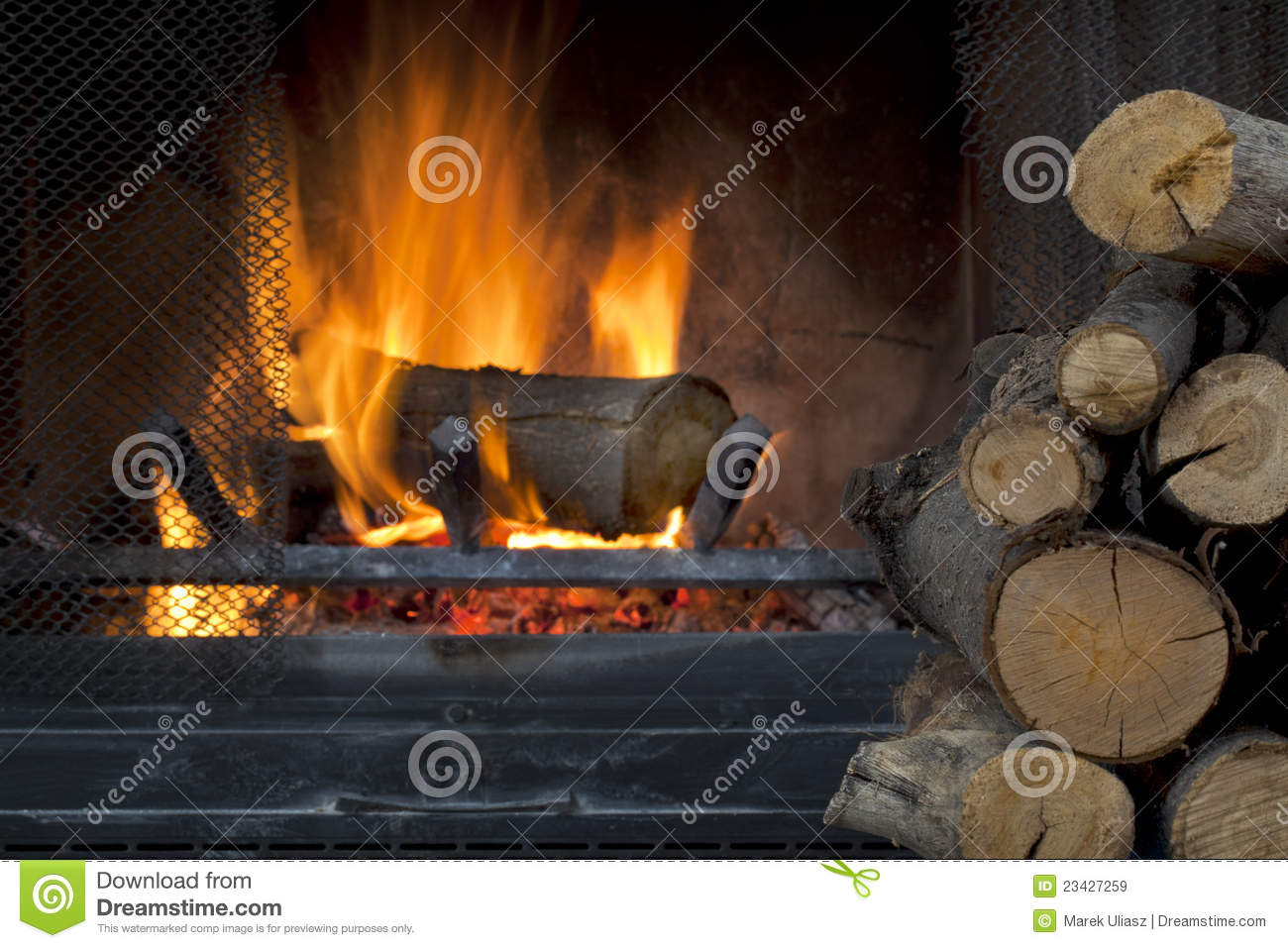 Fireplace and firewood