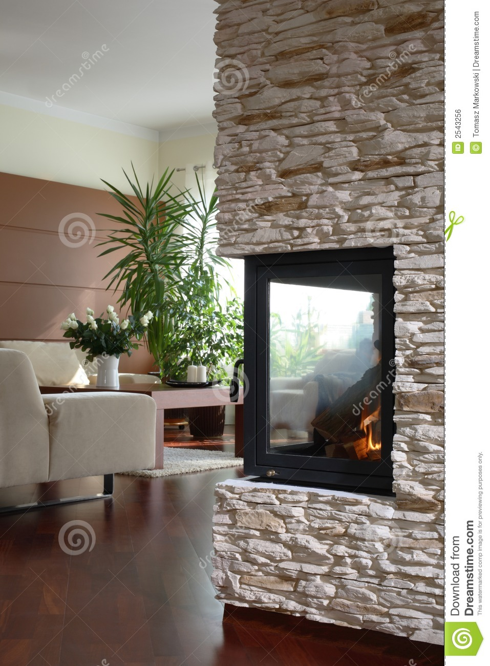 fireplace in modern living room stock photo image 2543256. Black Bedroom Furniture Sets. Home Design Ideas