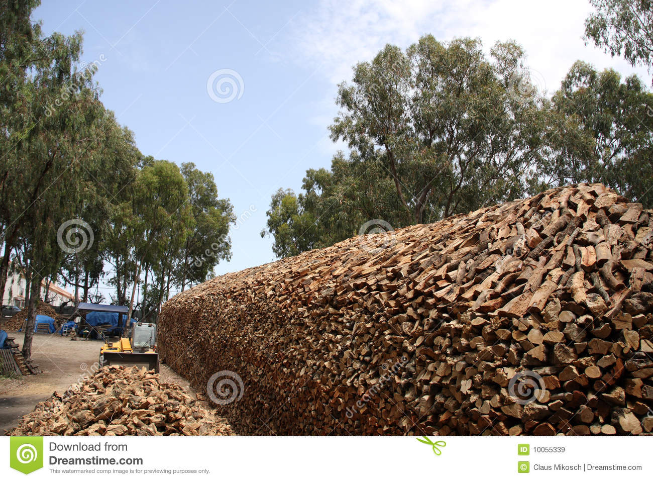 Firewood business stock image. Image of nature, tree - 10055339