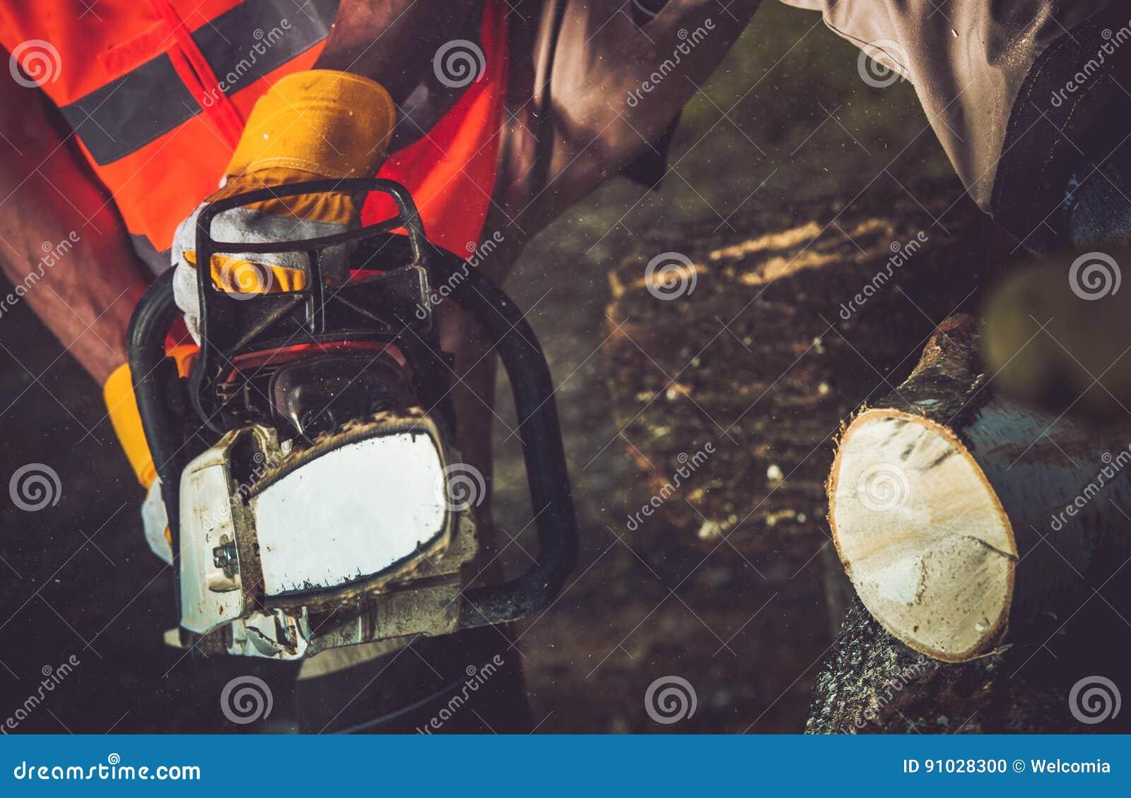 Download Firewood Logs Cutting stock photo. Image of break, caucasian - 91028300
