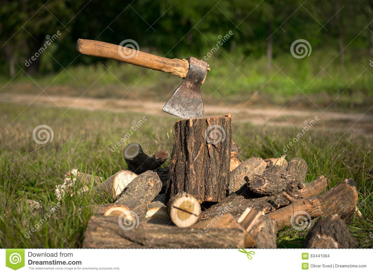 Firewood and old axe stock photo image
