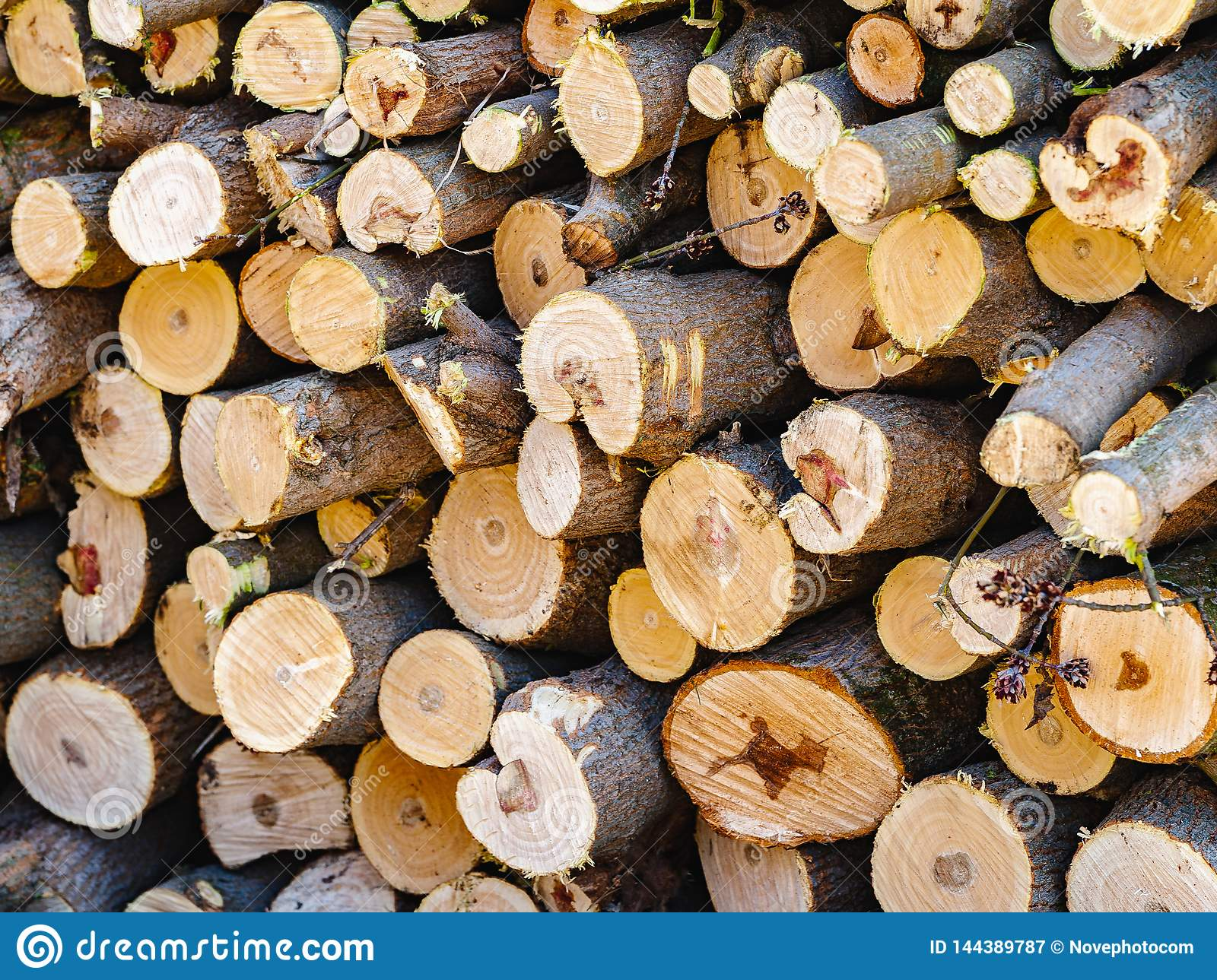 Firewood sawn stack. A pile of chopped wood