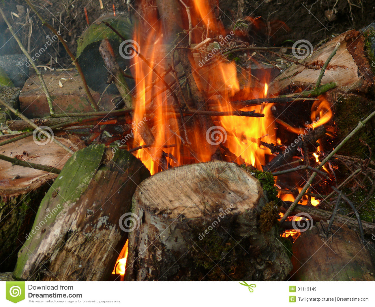 Firewood Royalty Free Stock Images Image 31113149