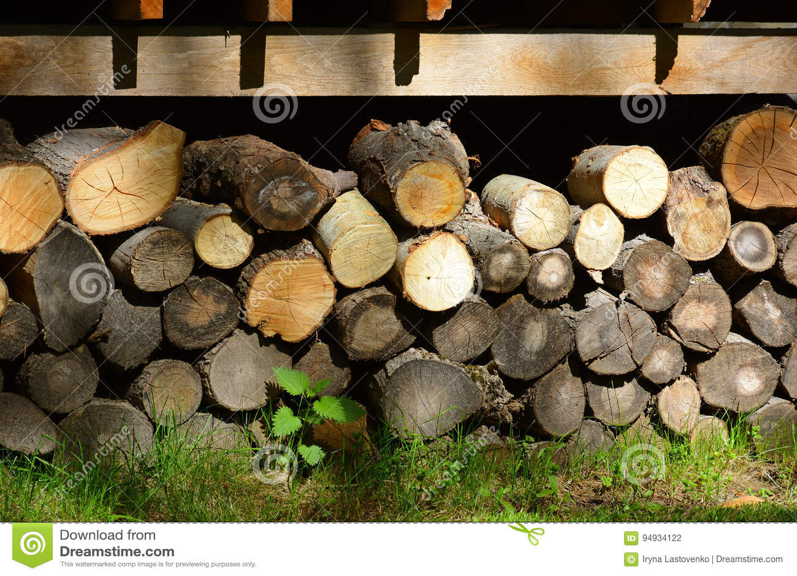 Firewood. Store firewood.