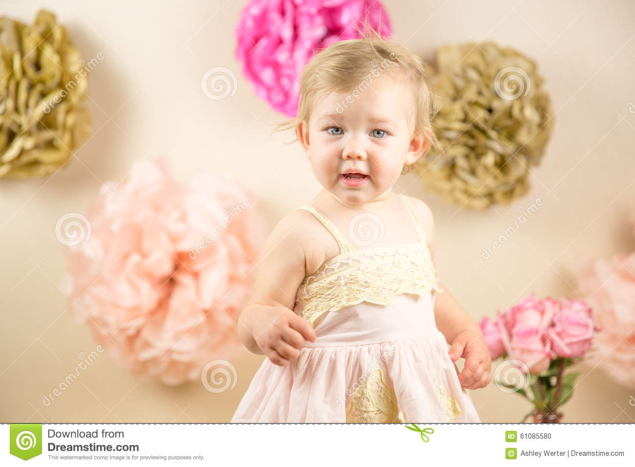 First Birthday Photoshoot Stock Photo Image Of Girl 61085580