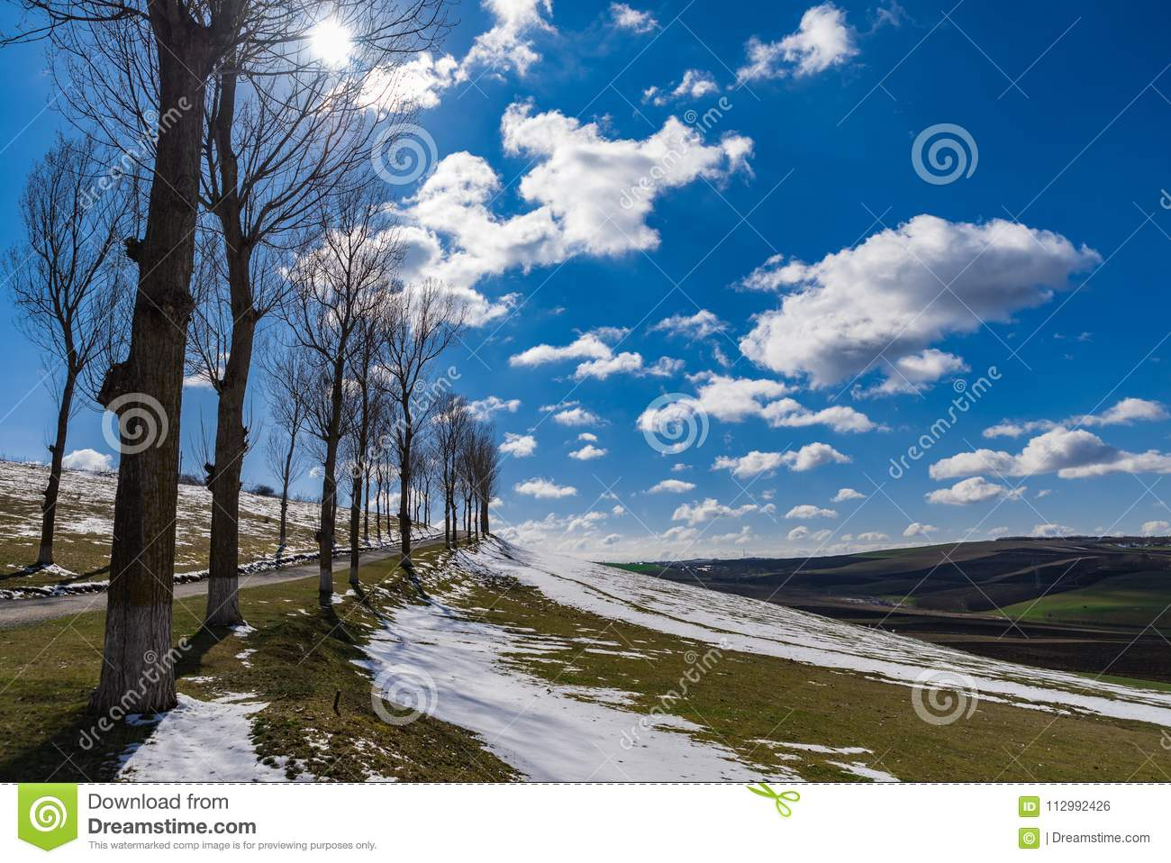First day of spring landscape