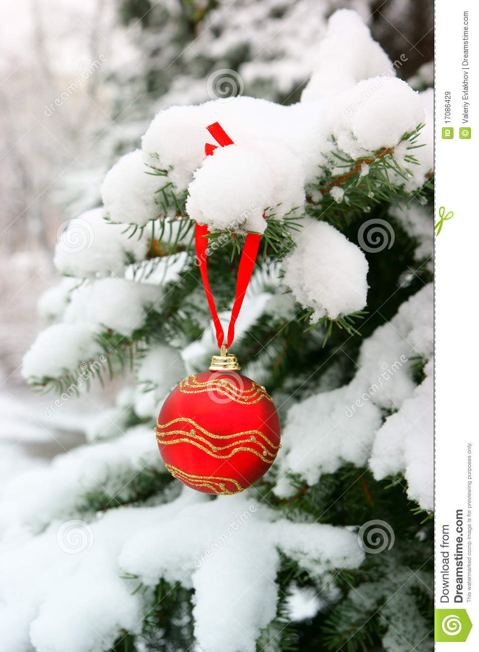 Firtree with christmas ball and snow