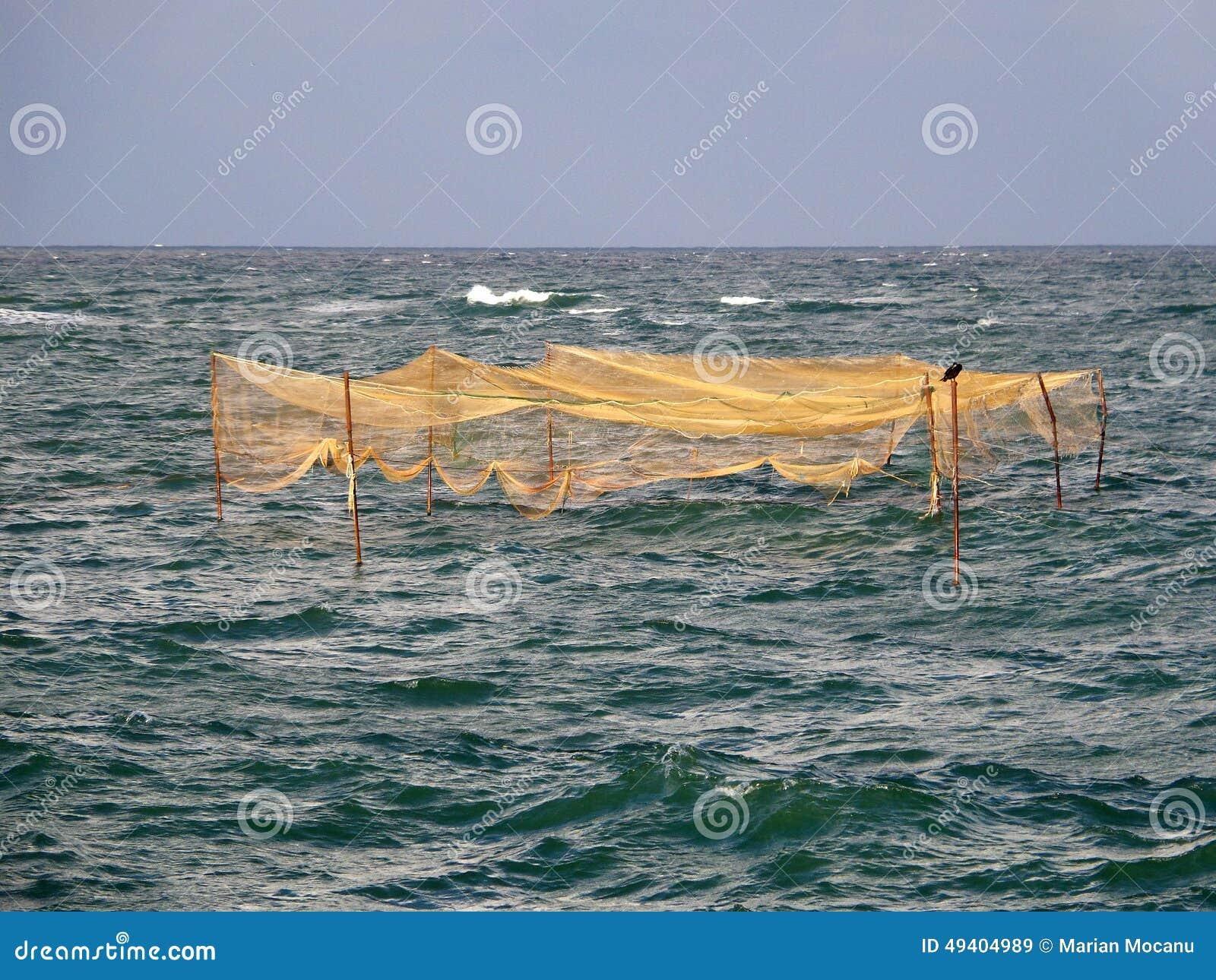 Download Fischfallen stockbild. Bild von verriegelung, landwirtschaft - 49404989