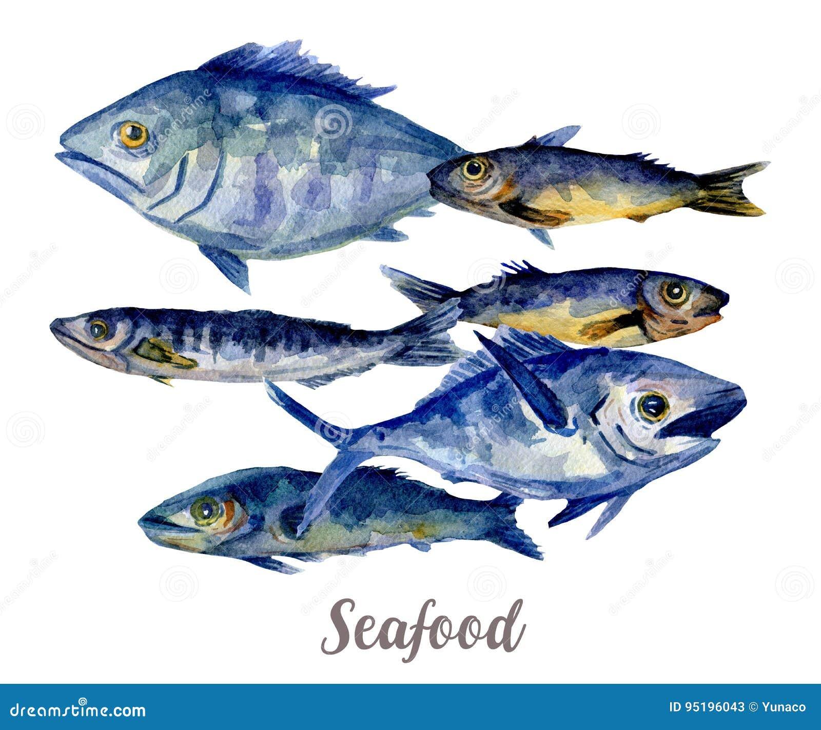 Fischt Abbildung Hand gezeichnetes Aquarell auf weißem Hintergrund