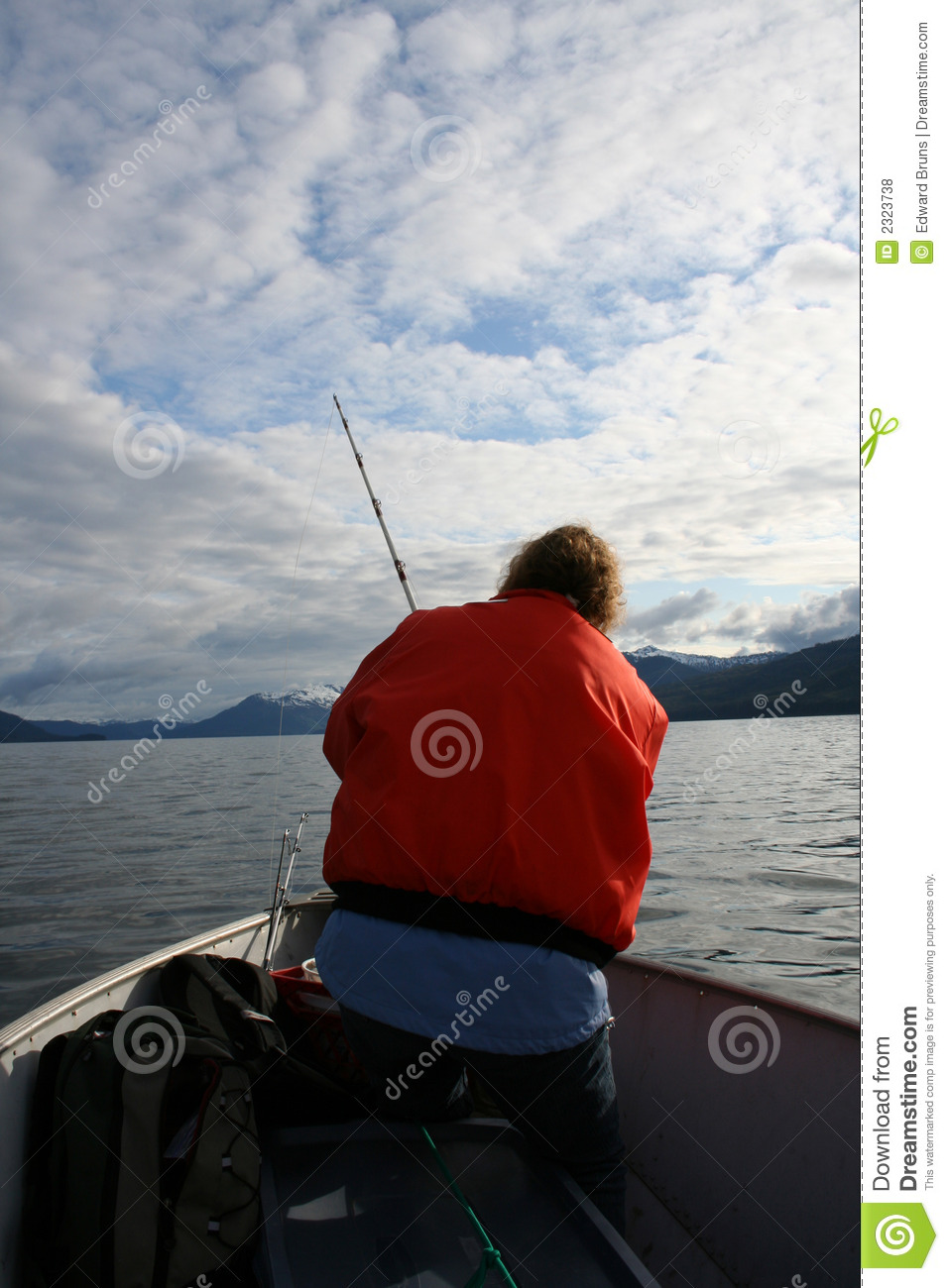 Fish alaska royalty free stock photos image 2323738 for Best time to fish in alaska