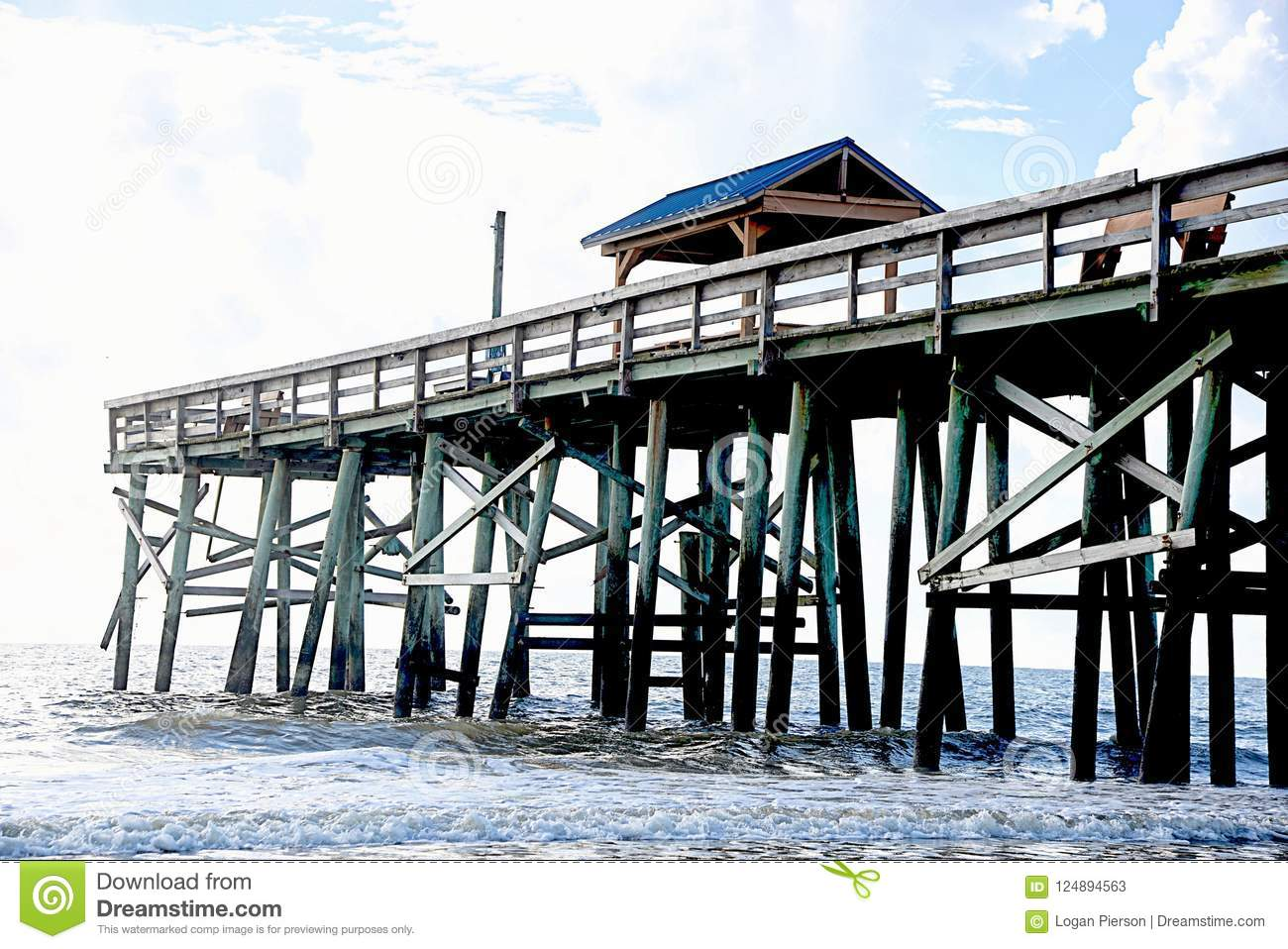 The fish are attracted to the pier which brings the osprey