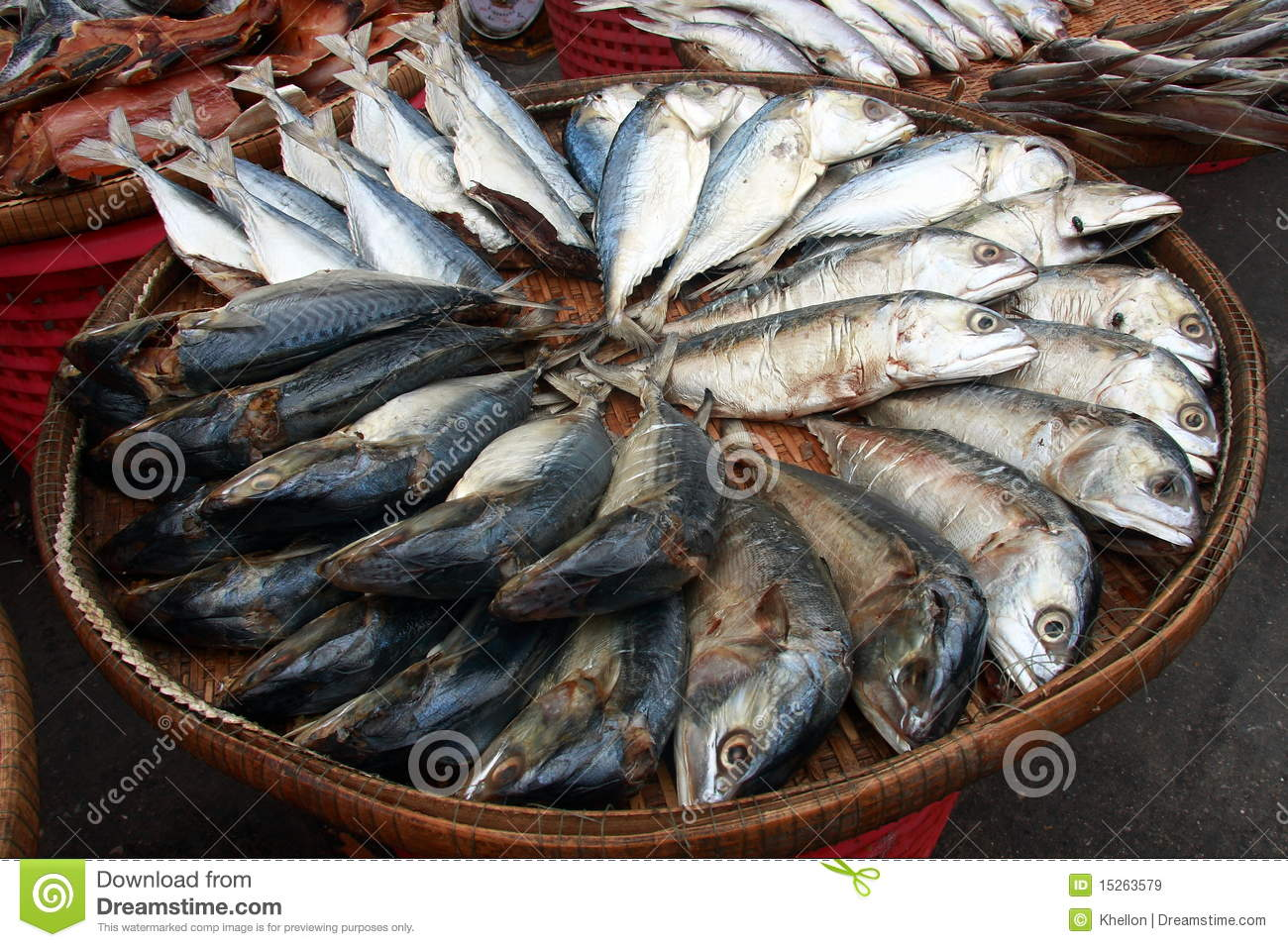 fish in a basket stock image  image of eating  fishing