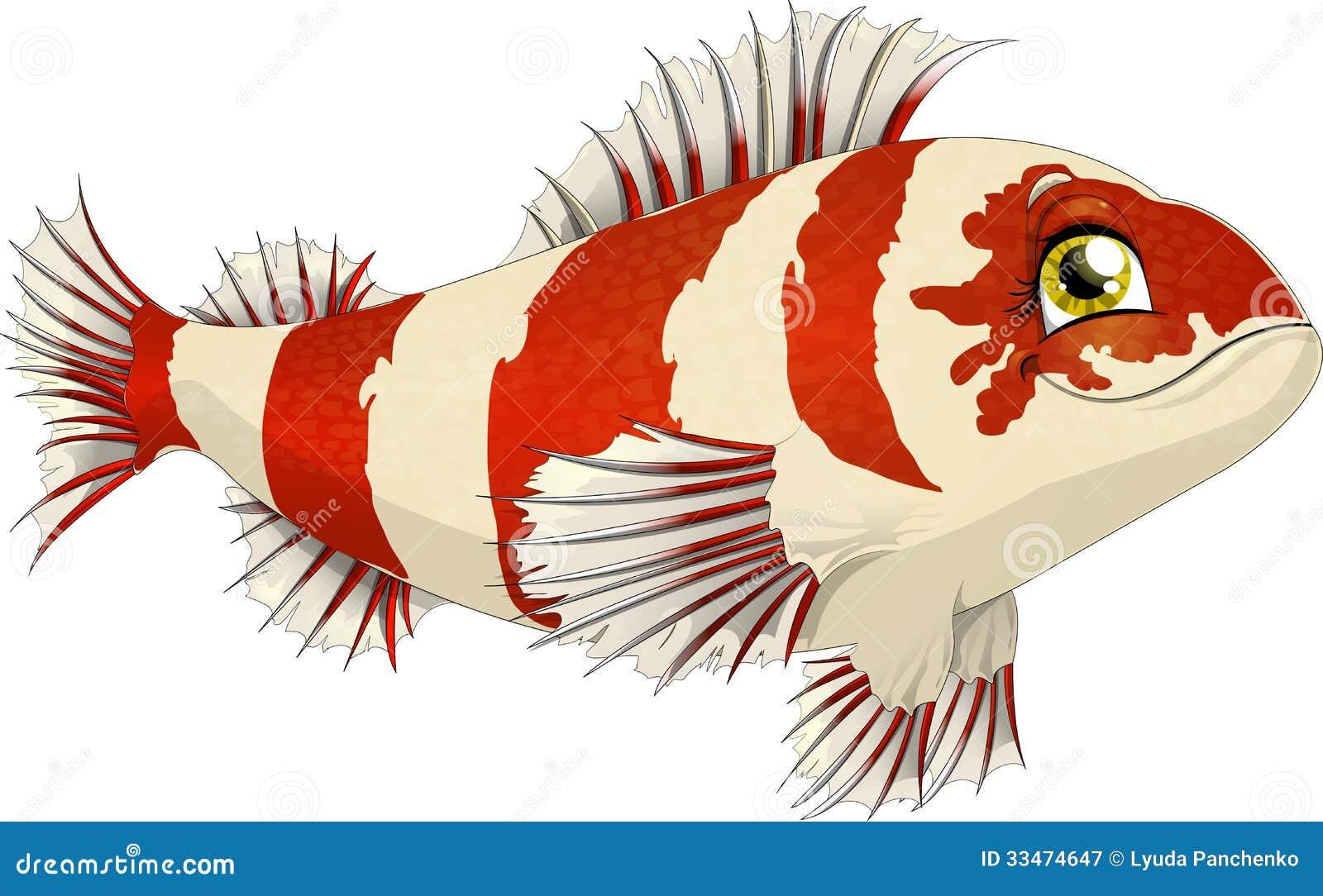 Fish Royalty Free Stock Photography Image 33474647