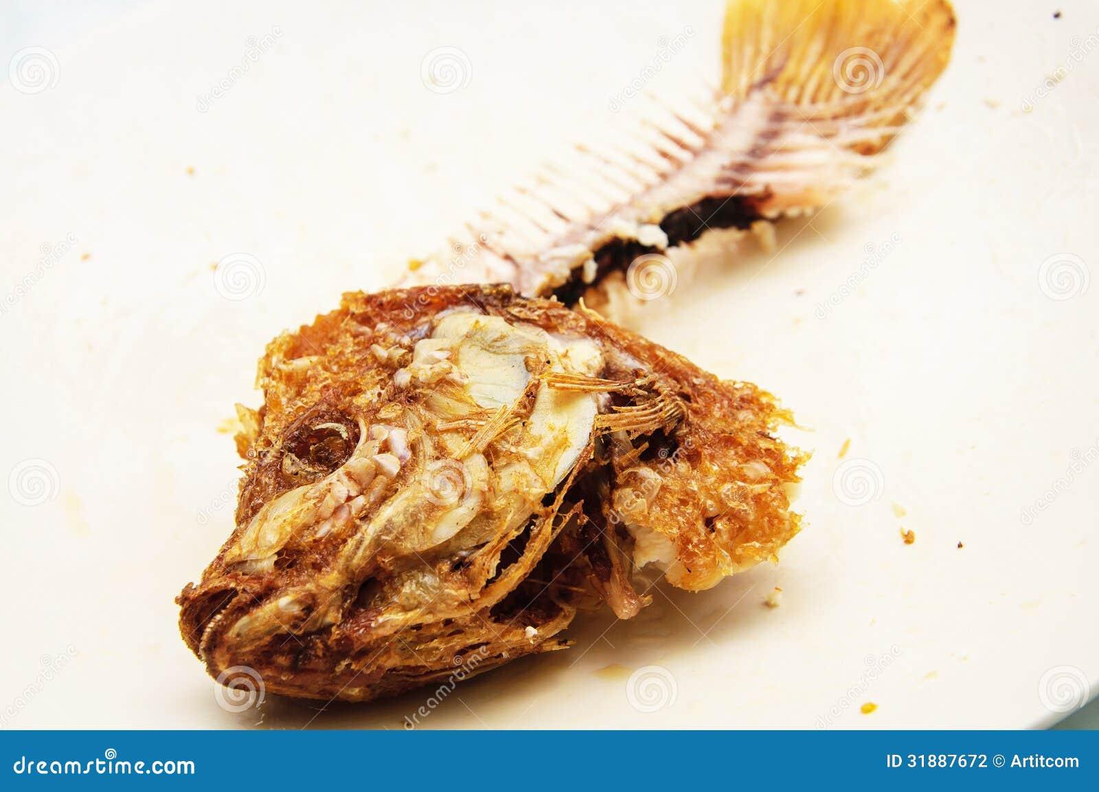 Fish Bone Stock Photo Image Of Carcass Graphics Dinner
