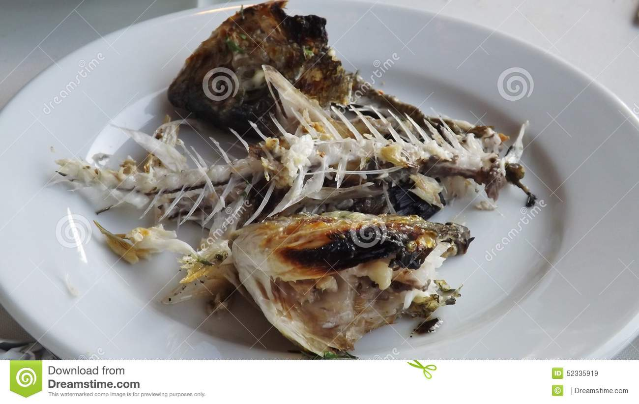 Fish bones of a dorade stock image image of holiday for Fish and bone restaurant