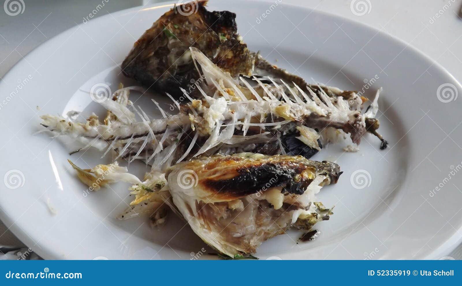 Fish bones of a dorade stock image image of holiday for Fish bones restaurant