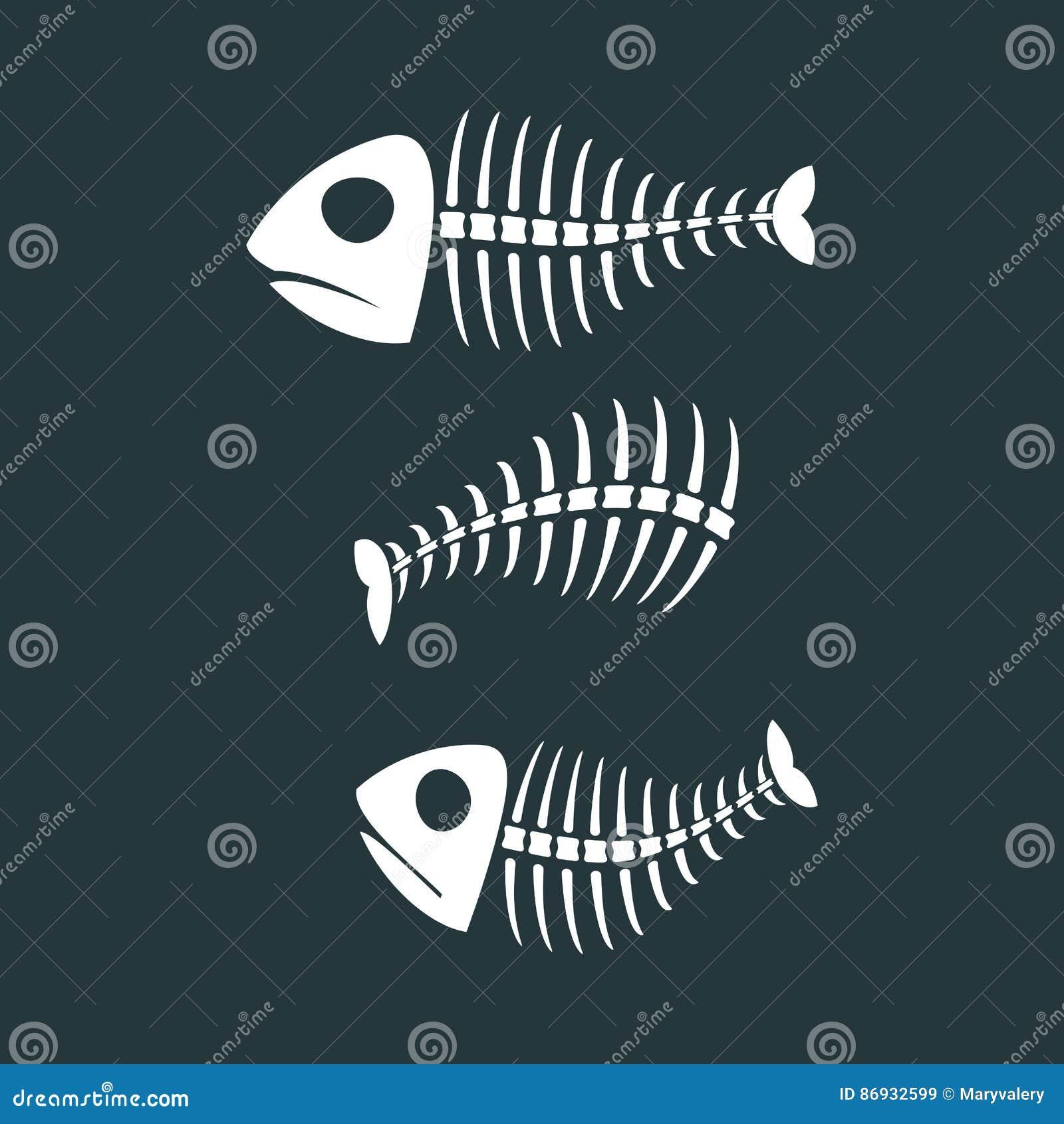 Fish bones isolated. fishy Skeleton on white background