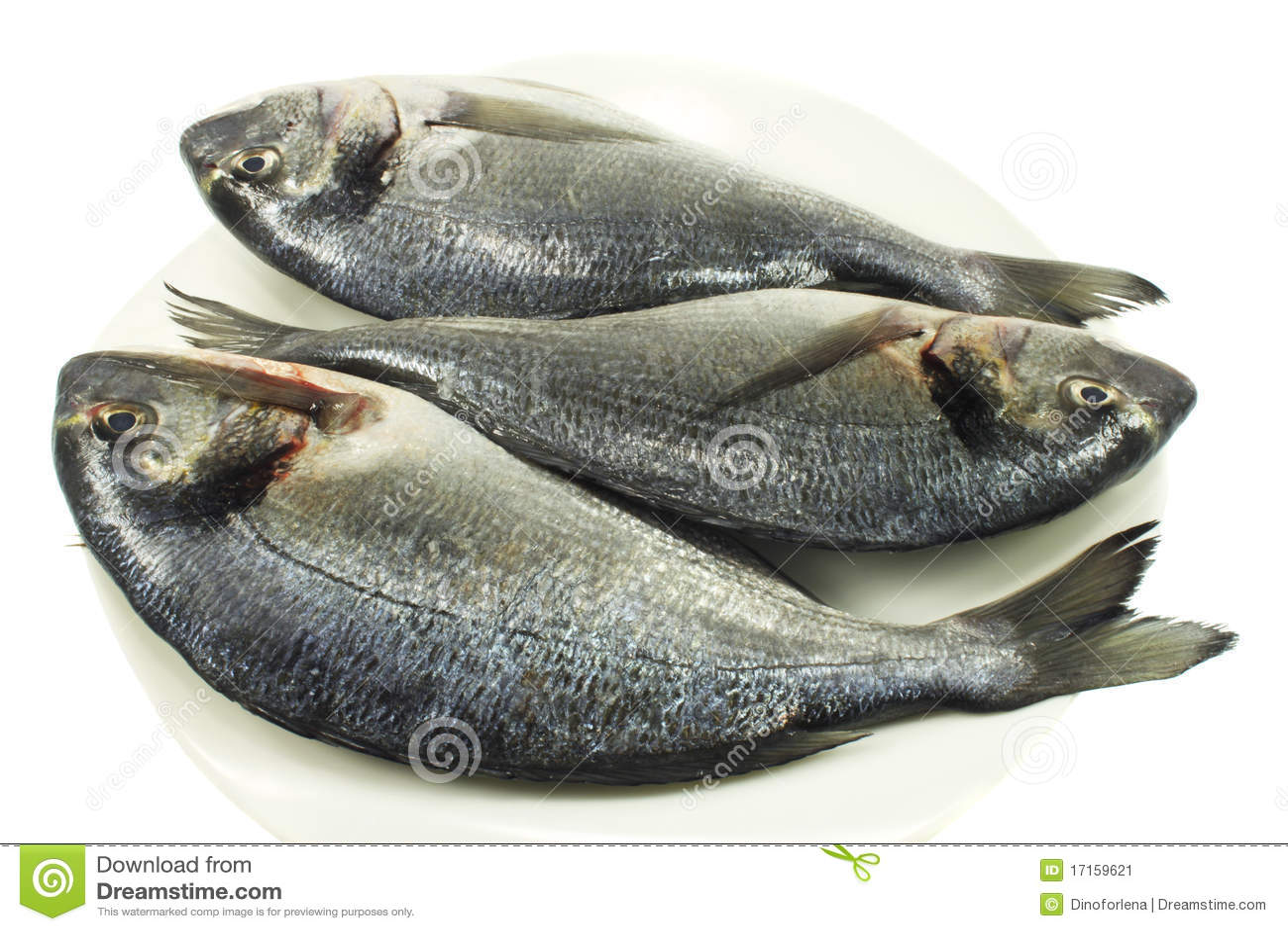 Fish dorado
