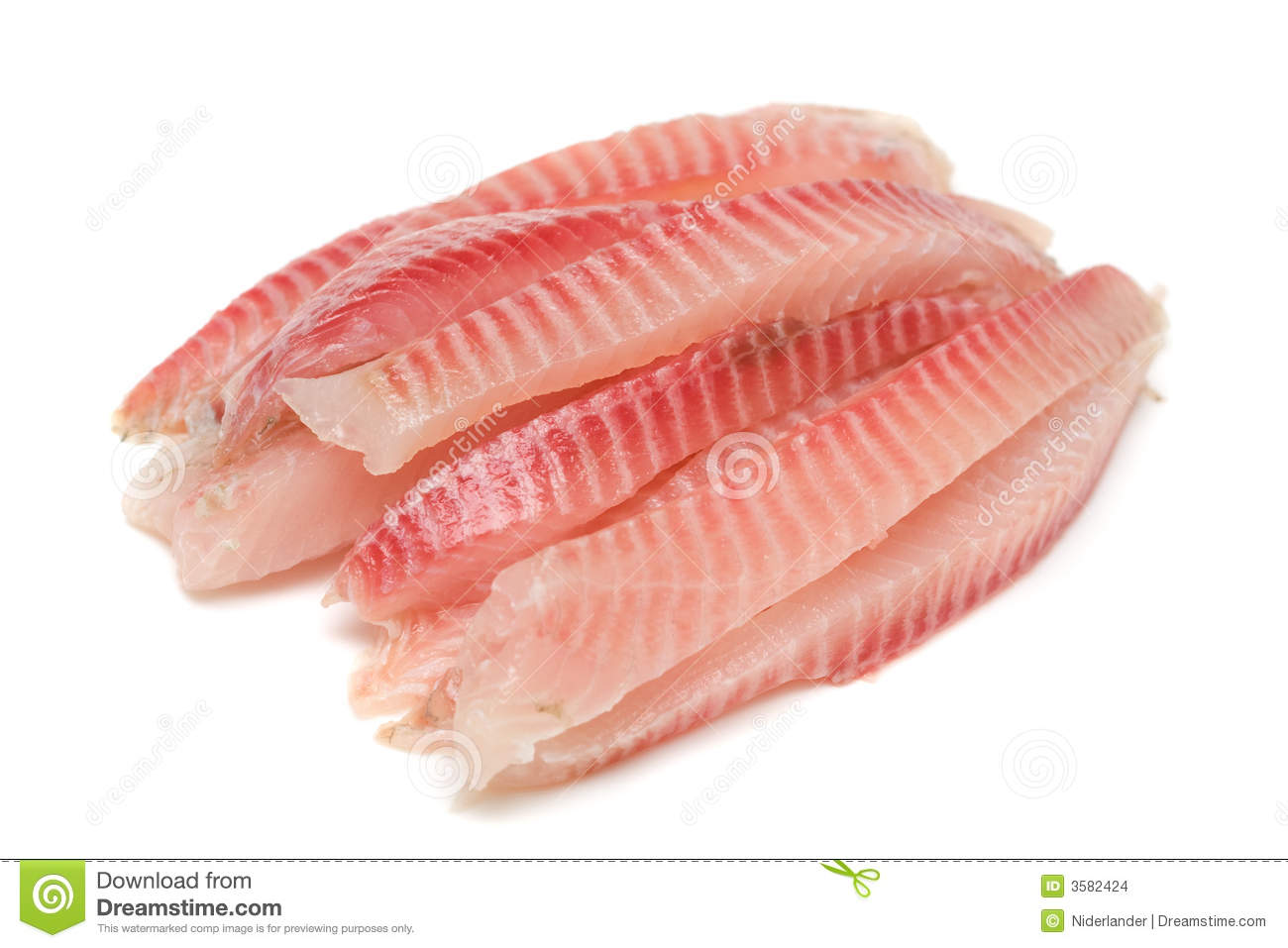 Fish fillet stock images image 3582424 for Filet of fish