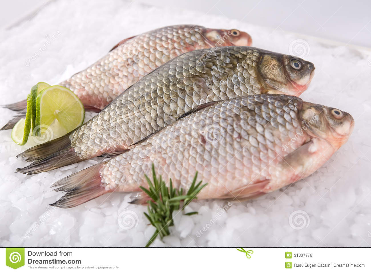 Fish fresh royalty free stock image image 31307776 for 95 9 the fish