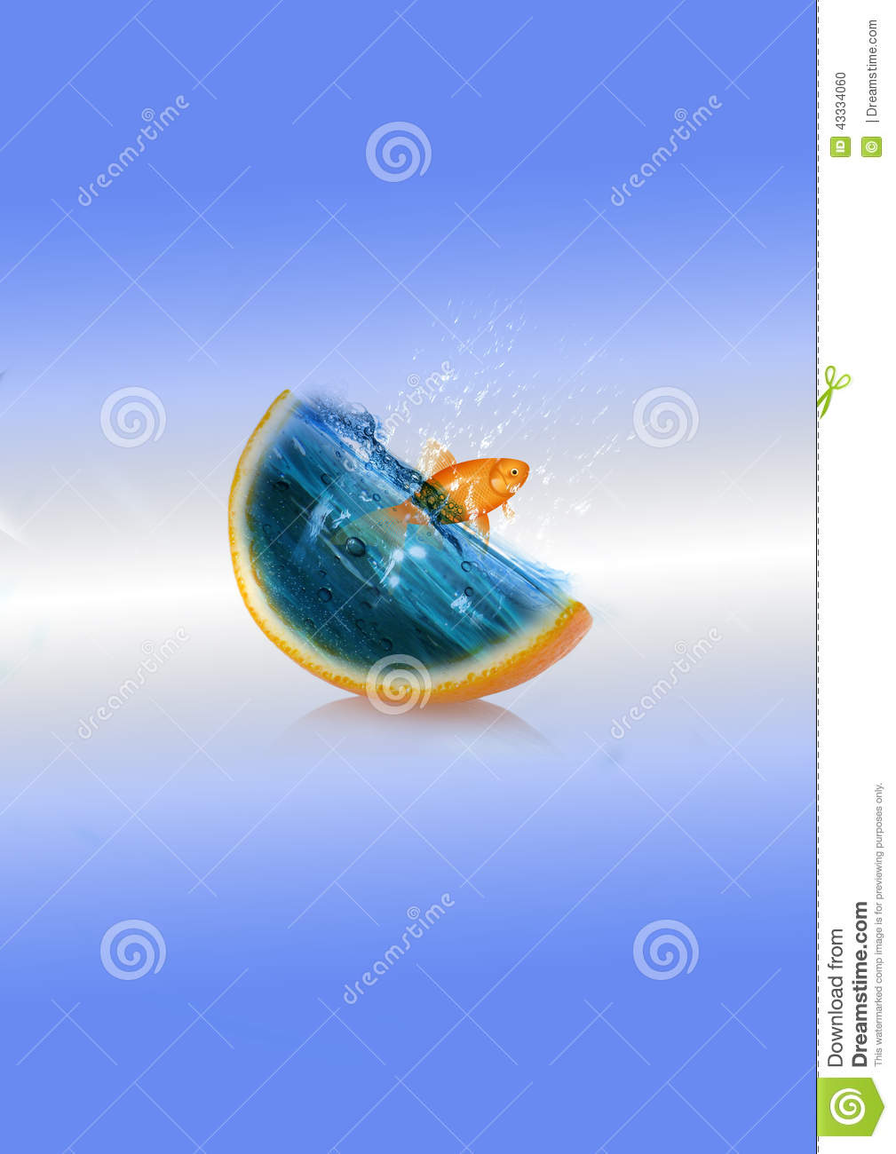 The fish stock illustration image 43334060 for Dream about fish out of water