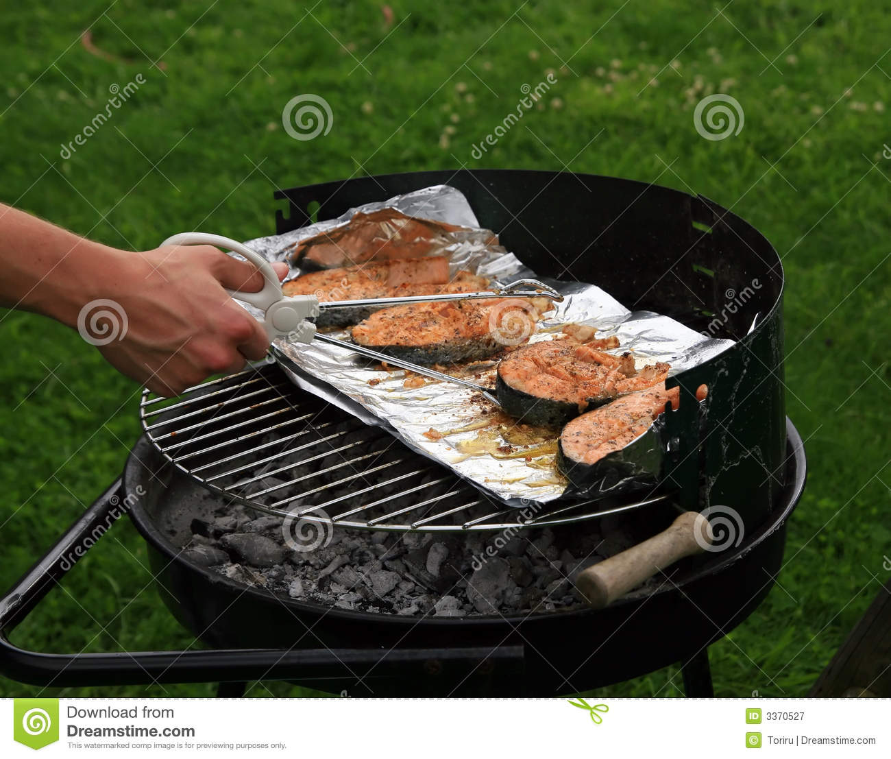 Fish on the grill royalty free stock photography image for The fish grill