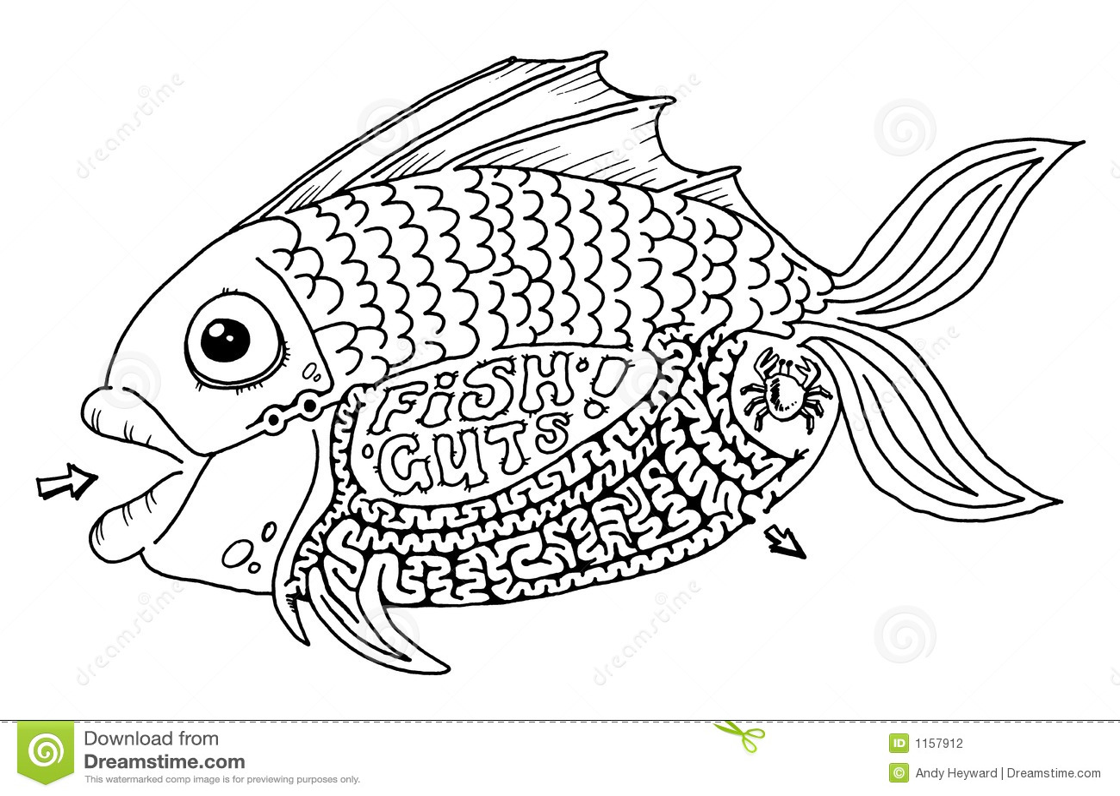 Fish Guts Maze Stock Photography Image 1157912