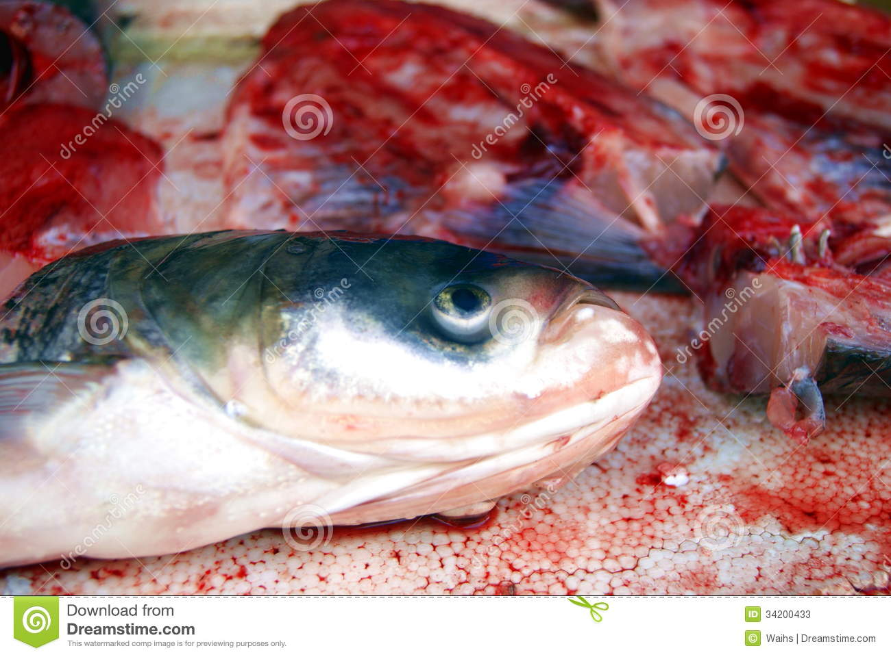 Fish heads and fish meat stock photos image 34200433 for Is fish considered meat