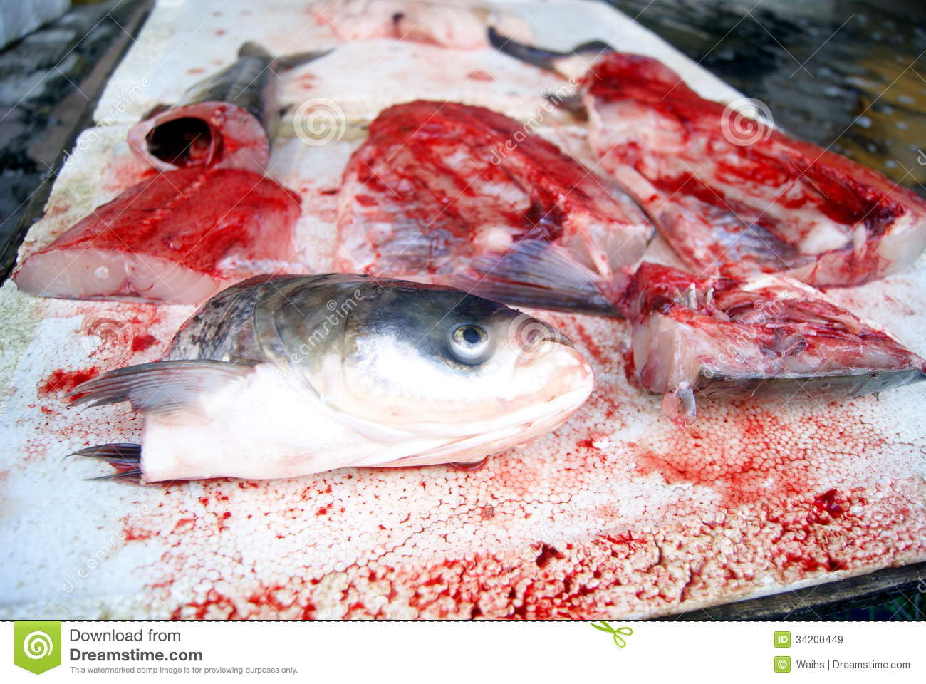 Fish heads and fish meat royalty free stock images image for Is fish considered meat