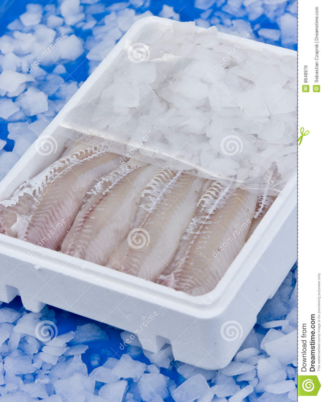 Fish In Ice Box Stock Photo Image Of Filleted