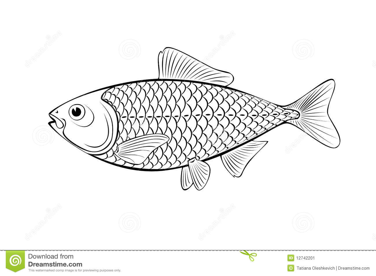 Stock Image Fish Illustration Image12742201 on love graphic