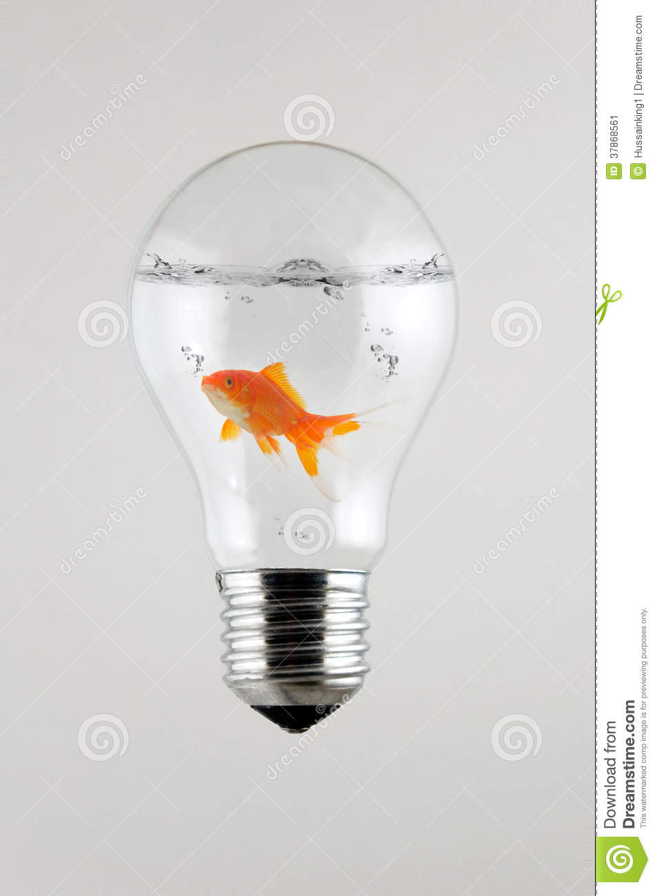 Fish Inside The Light Bulb Stock Image - Image: 37868561