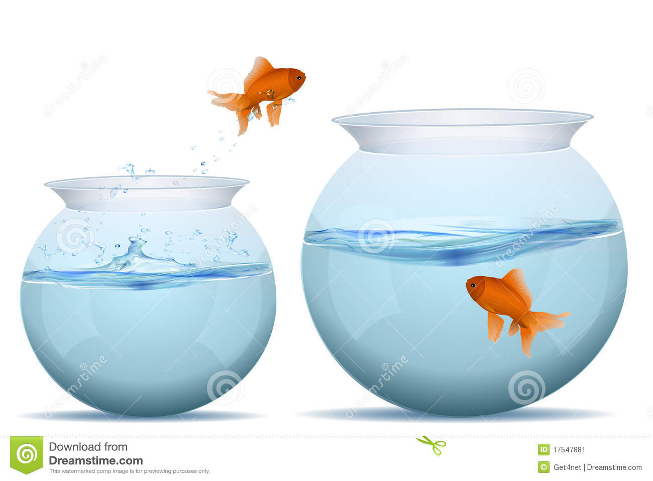 Fish Jumping From One Tank To Another Stock Vector Illustration Of