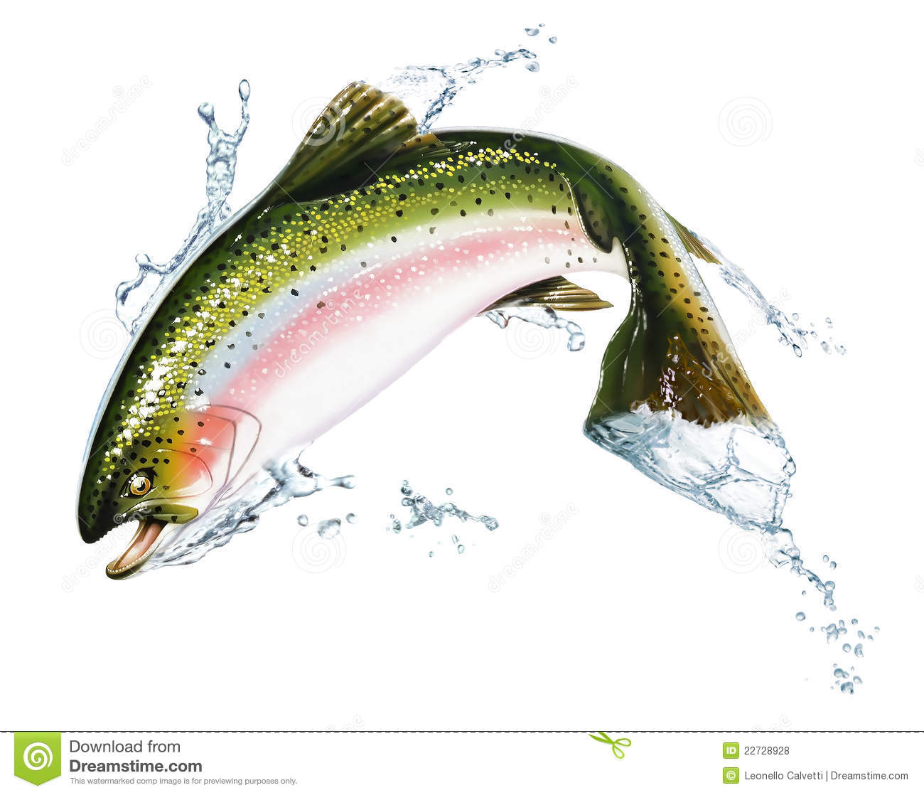 Fish jumping out of the water with some splashes royalty for Dream about fish out of water