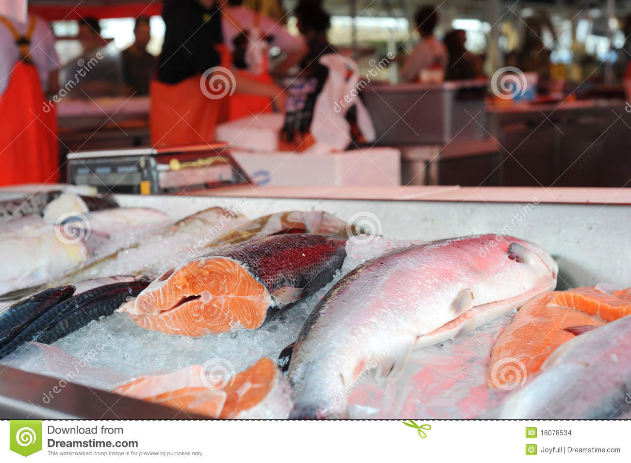 Frozen king salmon stock photo 6621456 for Kings fish market