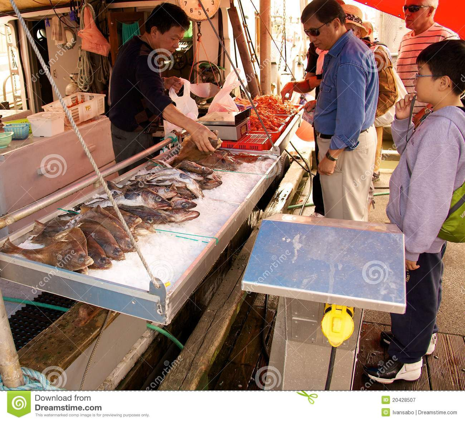 Fish market editorial photography image 20428507 for Fish market richmond va