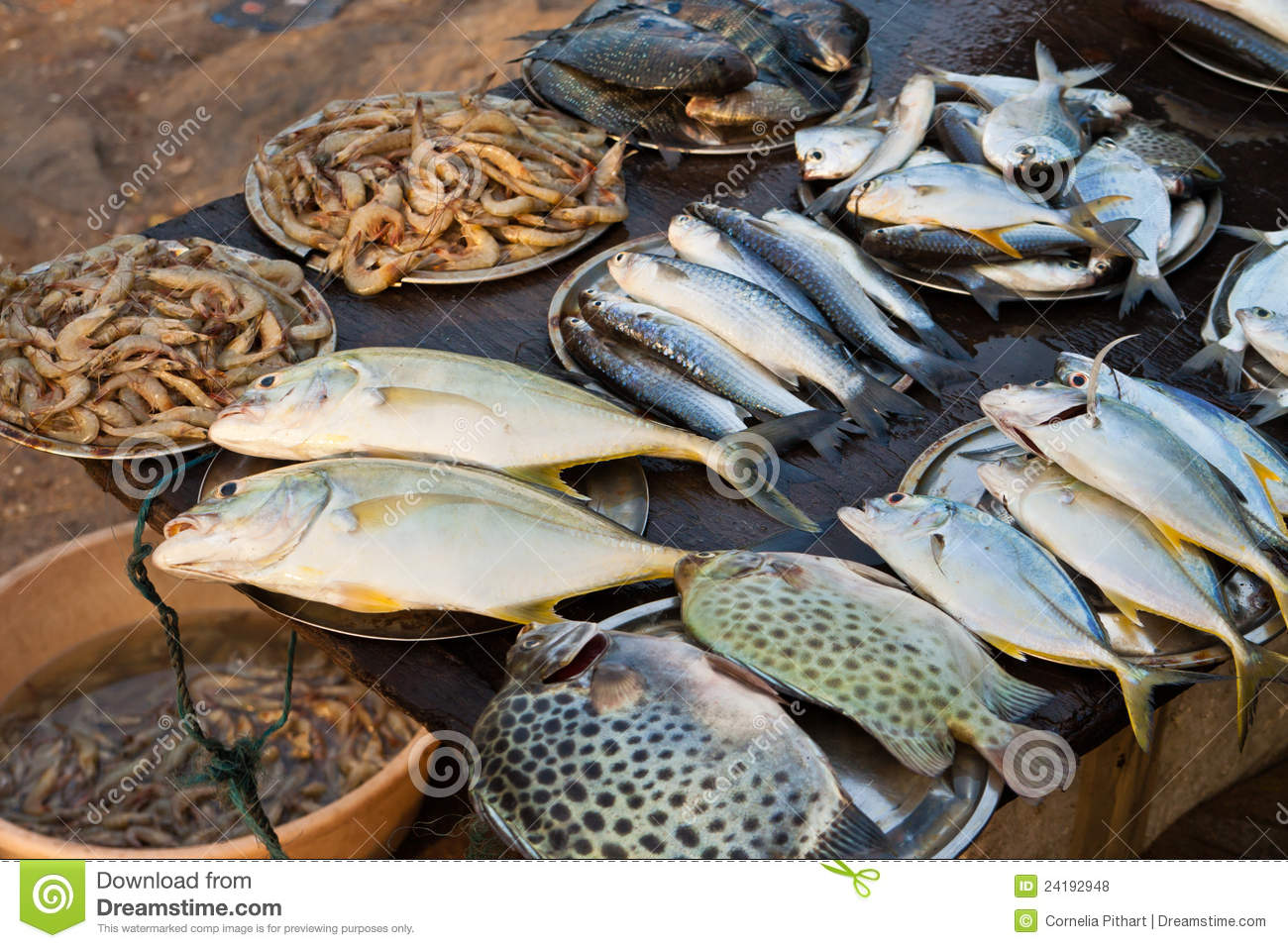 Fish market in kerala india stock photo image of for Fish stocking prices