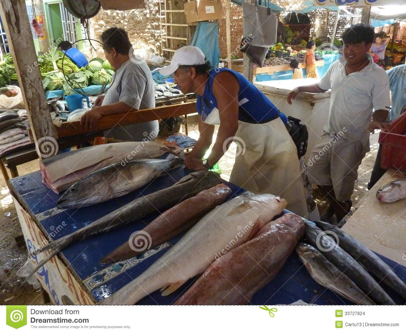 Fish market editorial stock image image 33727824 for Pacific fish market