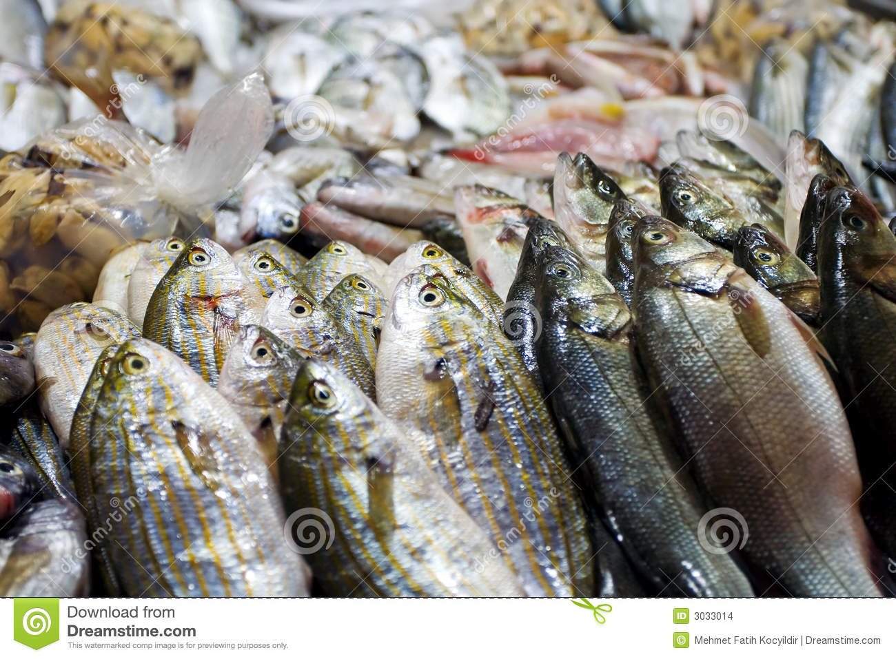 Fish At Market For Sale Stock Images Image 3033014
