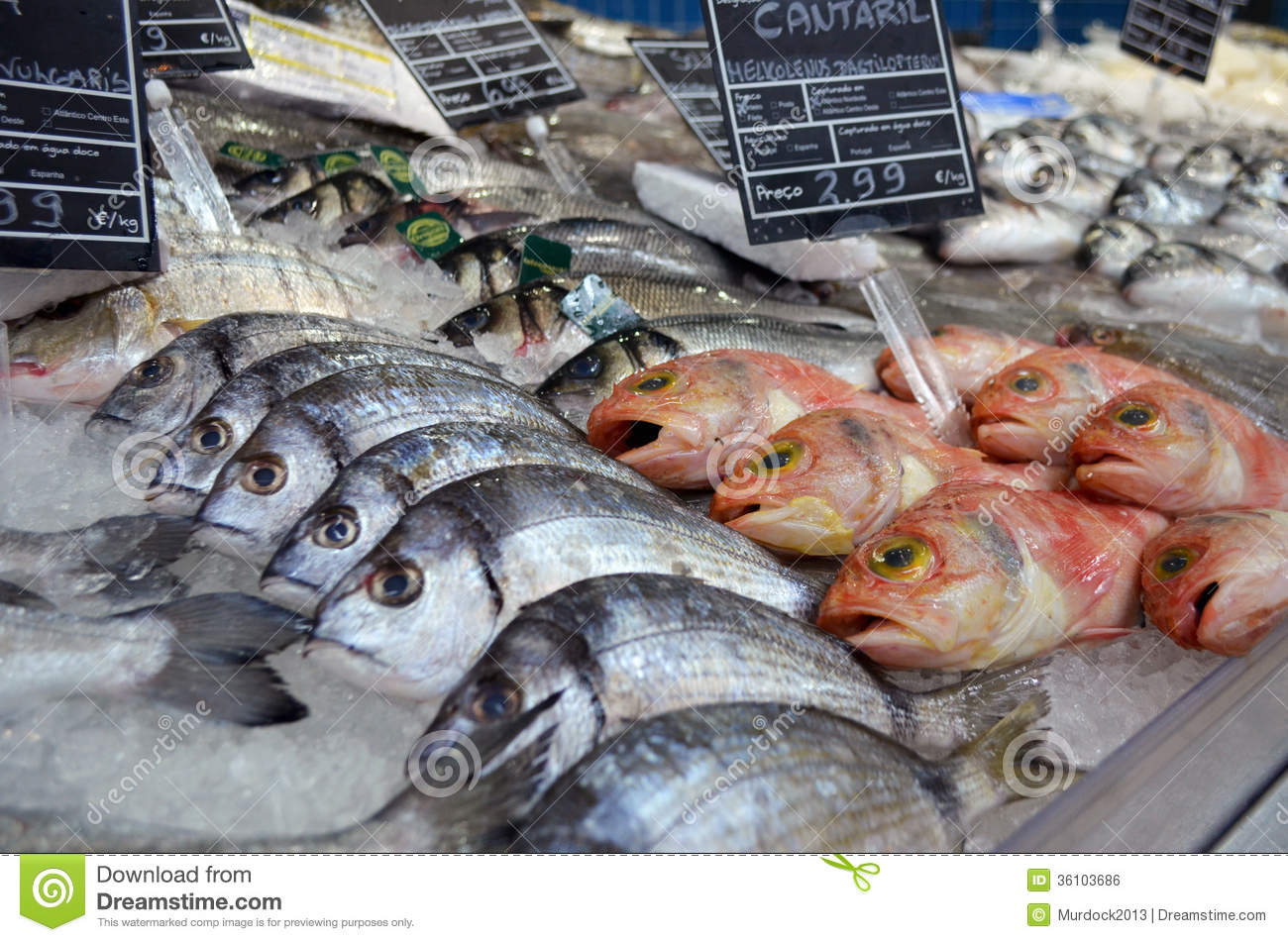 Fish market stock photo image of stall sell market for Stock fish for sale