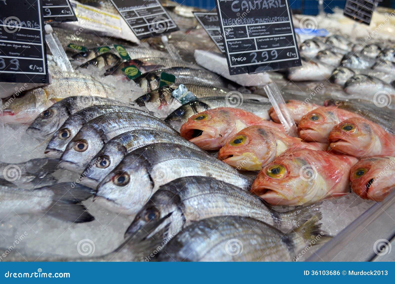 Fish market stock photo. Image of stall, sell, market - 36103686