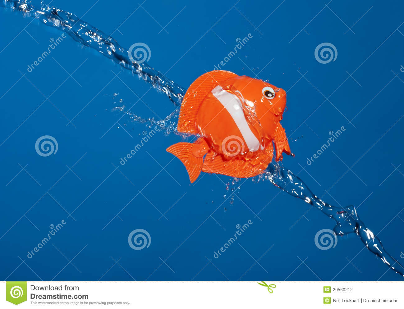 Fish out of water stock photography image 20560212 for Dream about fish out of water