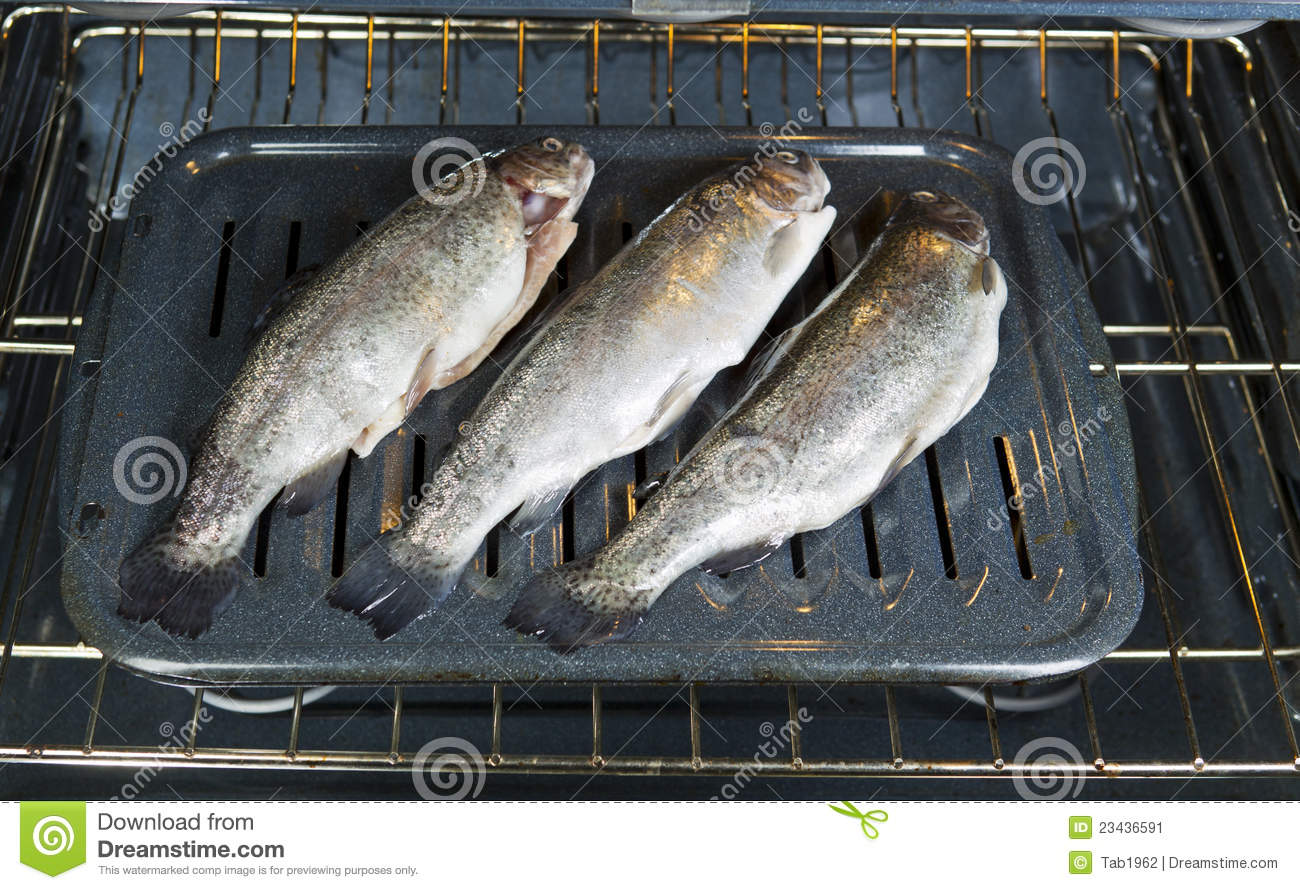 Fish oven bound stock image image 23436591 for Fish in oven