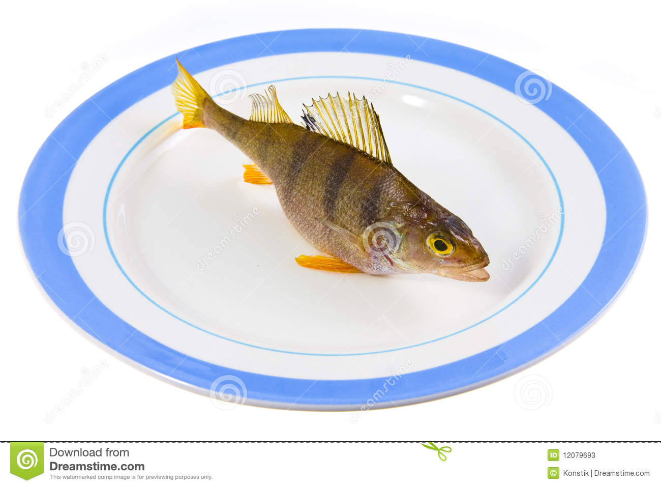 fish on a plateau stock photos image 12079693