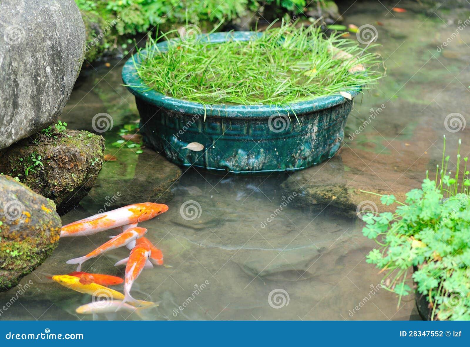 Fish Pond Stock Photography Image 28347552