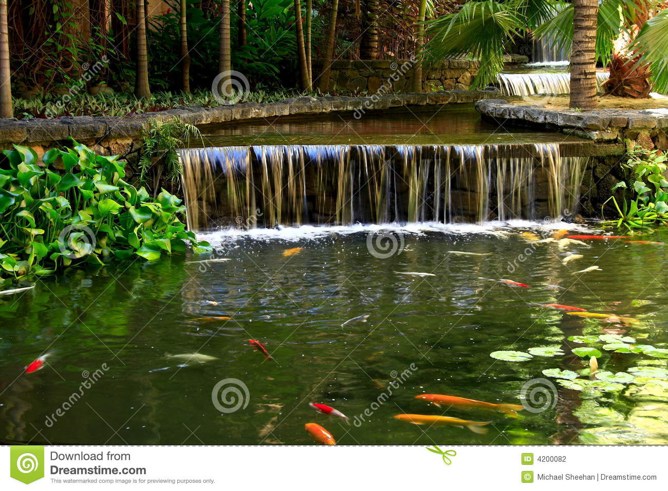 Fish pond stock photography image 4200082 Setting up fish pond