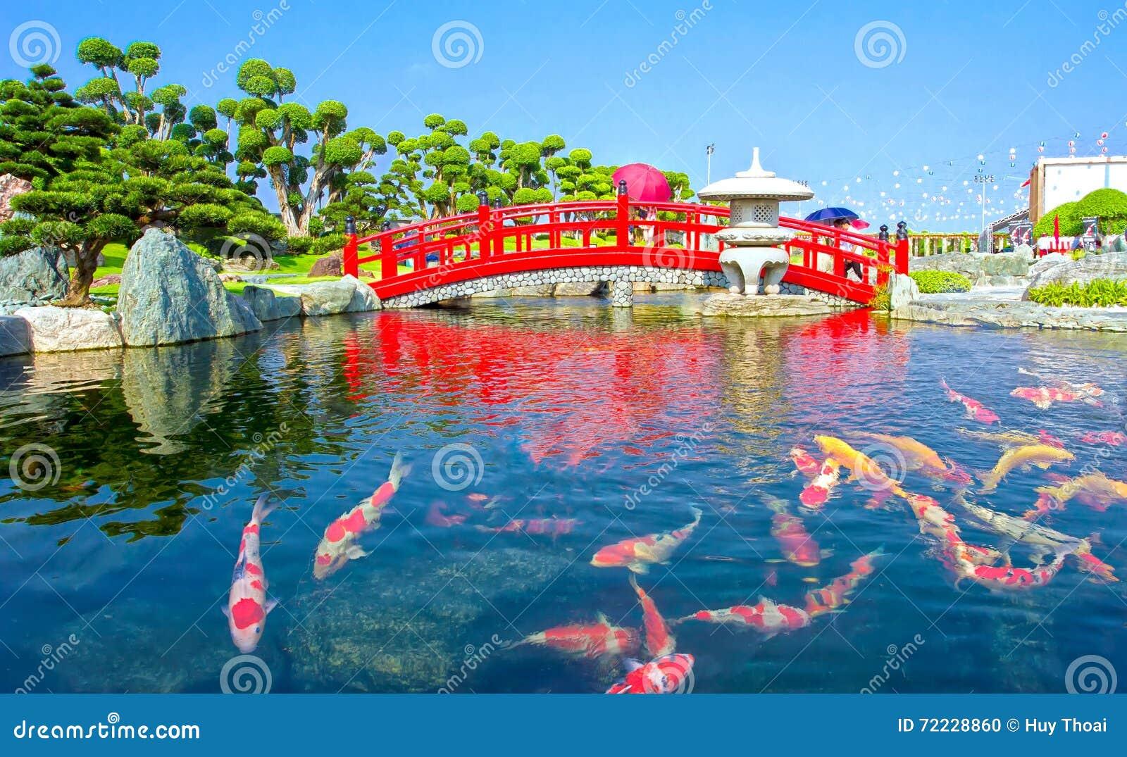 The pond inside eikando temple stock photo cartoondealer for Koi pond quezon city