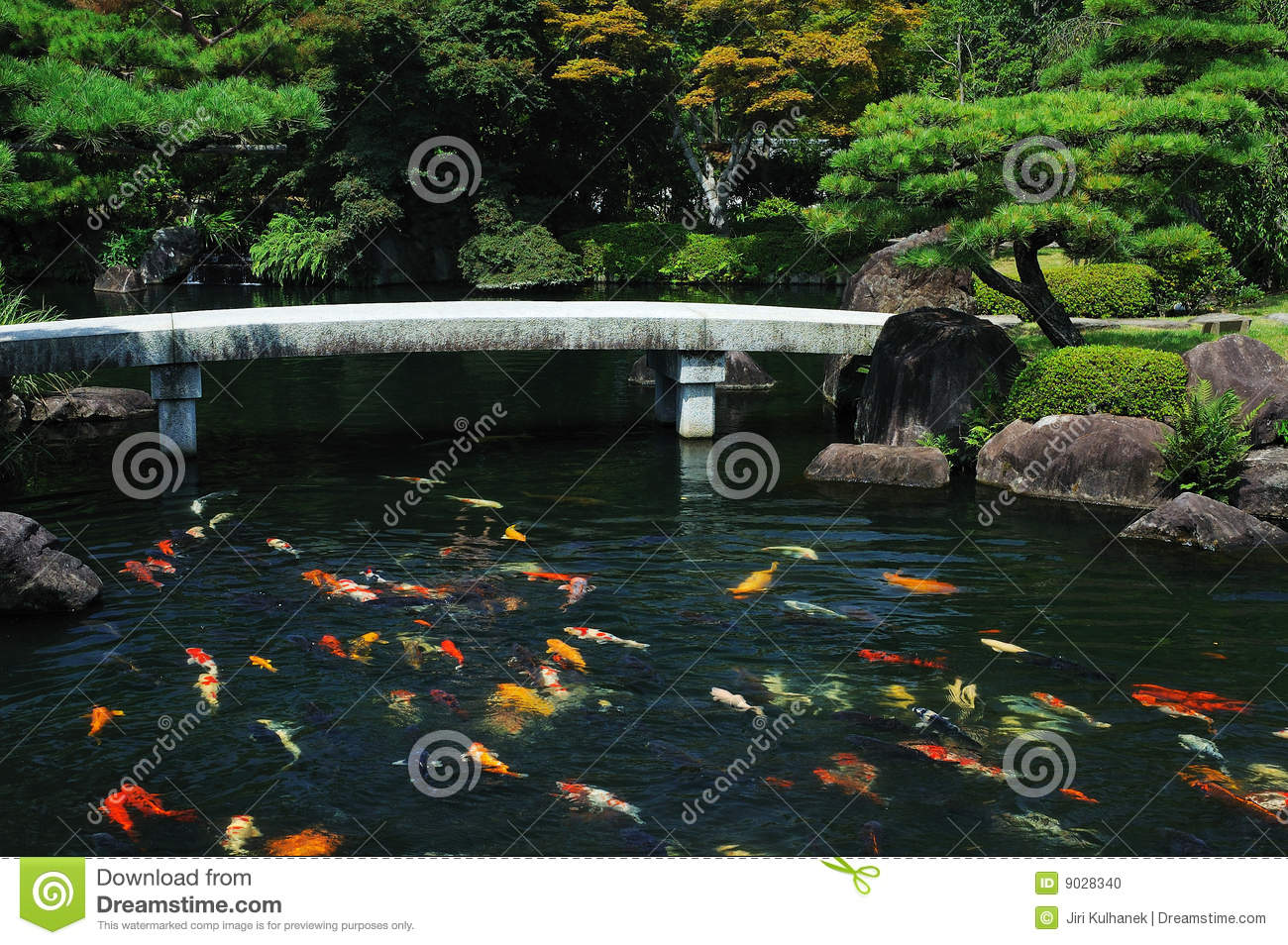 Fish pond at japanese garden stock photo image 9028340 for Koi pond supply of japan