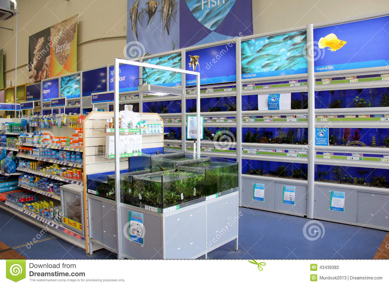 Pets At Home Cold Water Fish Prices