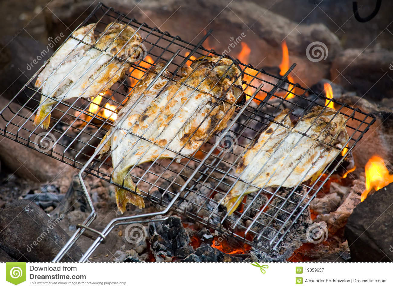 fish roasting on fire stock image image of charcoal 19059657